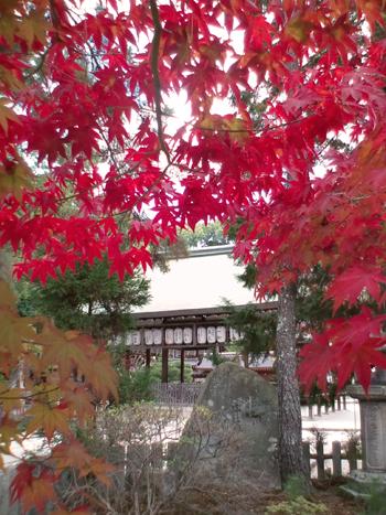 blog-2010imamiya2.jpg