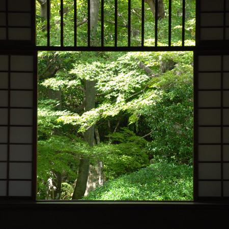 blognew-genkouan2.jpg
