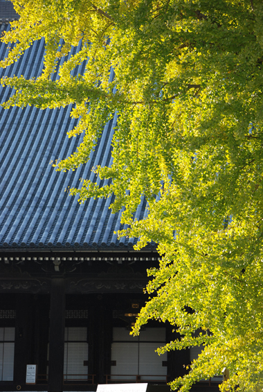 blognew-nishihonganji2.jpg